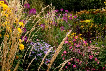 Garten Moorriem